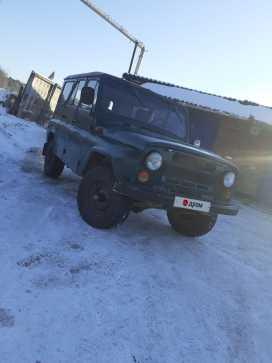 Томск 3151 1989