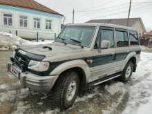 Омск Galloper 2001