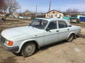 Чебаркуль 31029 Волга 1996