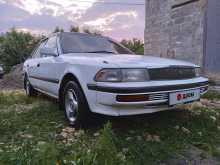 Новомышастовская Corona 1989