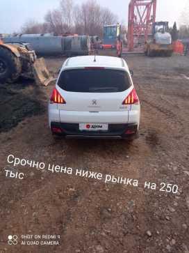 Черепаново 3008 2014
