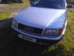 Славск Audi 100 1991