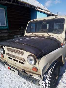 Красный Чикой 3151 2003