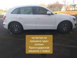 Краснодар Q5 2010