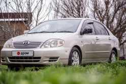 Краснодар Corolla 2003