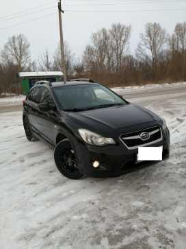 Новокузнецк XV 2012