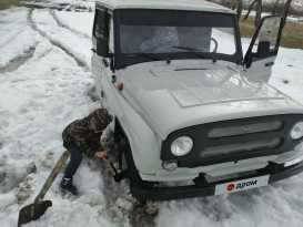 Челябинск 3151 2003