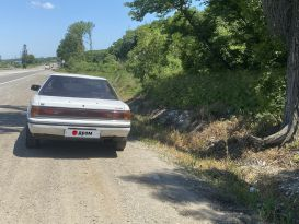 Carina ED 1987