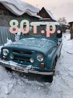 Рубцовск 3151 1993