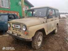 Пермь 3153 1996