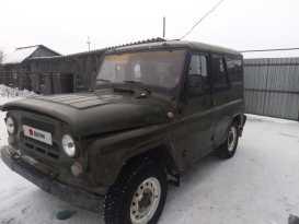 Каргаполье 3151 2004