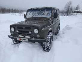 Междуреченск 3151 1995