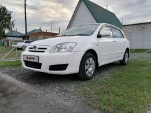 Камень-на-Оби Corolla Runx 2006