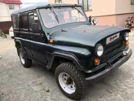 Челябинск 3151 1994