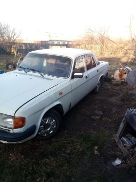 Биробиджан 31029 Волга 1994