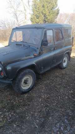 Кошурниково 3151 2001