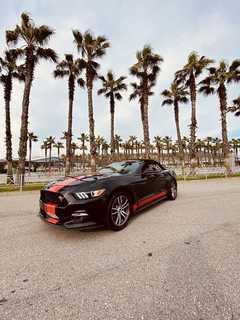 Сочи Mustang 2017