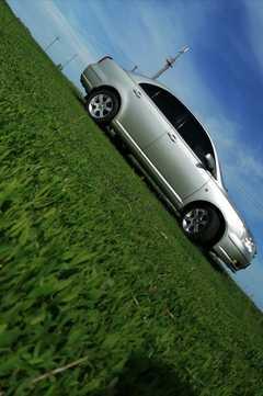 Петухово Avensis 2003