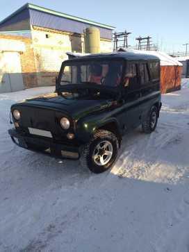 Заводоуковск 3151 2008