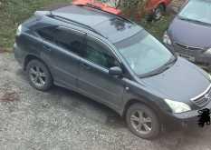 Ордынское RX400h 2006