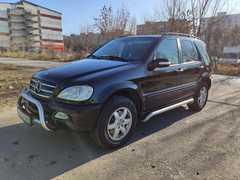 Ростов-на-Дону M-Class 2002