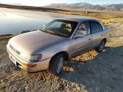 Кош-Агач Corolla 1993