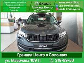 Красноярск Kodiaq 2020