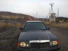 Сорск 190 1991