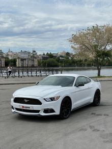Воронеж Mustang 2014
