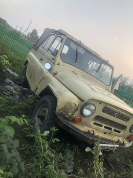 Кемерово 3151 1990