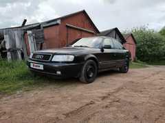 Великие Луки Audi 100 1991