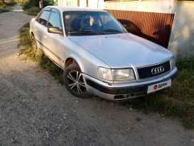 Грязи Audi 100 1991