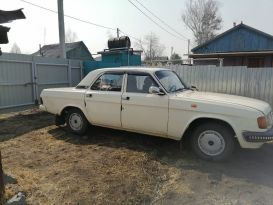 Райчихинск 31029 Волга 1993