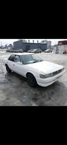 Берёзовка Chaser 1990
