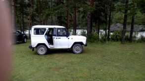 Салаир 3151 2011
