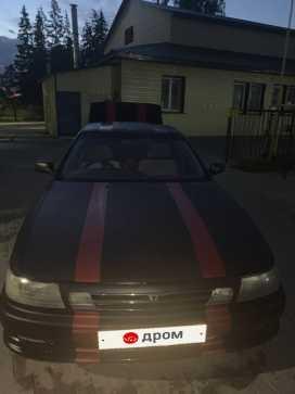 Vista 1991