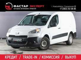 Новосибирск Partner 2012