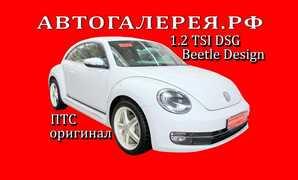 Хабаровск Beetle 2014