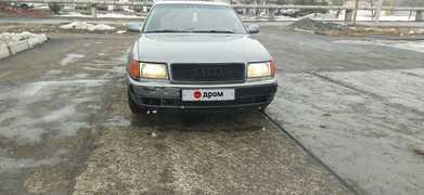 Шадринск 100 1991