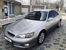 Новороссийск Windom 2000