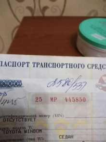 Барнаул Windom 1999