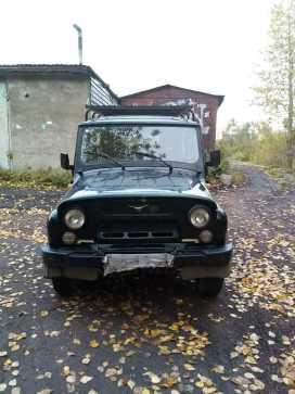 Новокузнецк 3151 2011