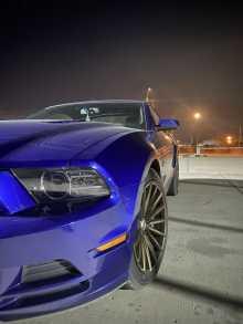 Благовещенск Mustang 2014