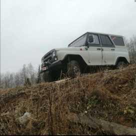 Красноярск 3151 2004