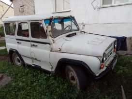 Змеиногорск 3151 1995